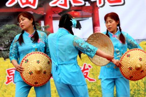 南部县首届菜花节开幕活动6